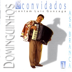 Dominguinhos - Dominguinhos & Convidados Vol. 1 (2006)
