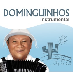 Dominguinhos - Dominguinhos Instrumental (2014)