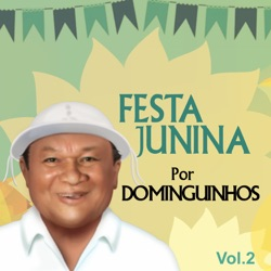 Dominguinhos - Festa Junina por Dominguinhos,Vol. 2 (2014)