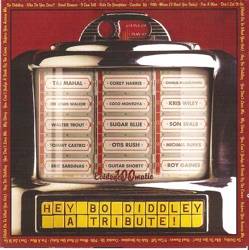 Various Artists - Hey Bo Diddley - A Tribute! (2002)
