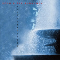 Echo & The Bunnymen - Think I Need It Too (2009)
