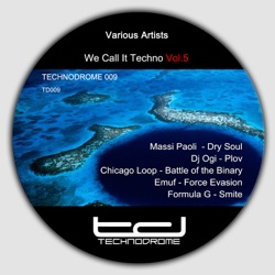 Various Artists - We Call It Techno, Vol. 5 (2013)